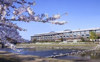 ritz carlton kyoto cherry blossom
